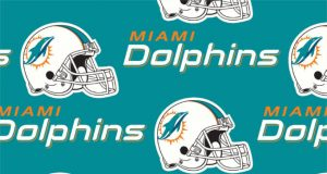 FREE Miami Dolphins Fan Pack