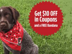 FREE Nulo Dog Bandana
