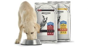 FREE Sample of Breakaway Dog Food